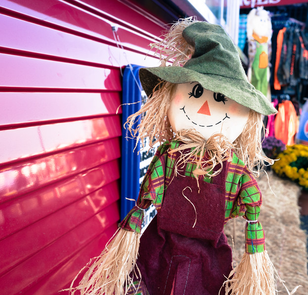 Cute scarecrow at NC State Fair 2016