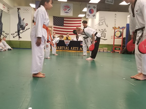 Belt Test Feb 2019