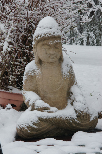 Buddha from Black Dog Salvage