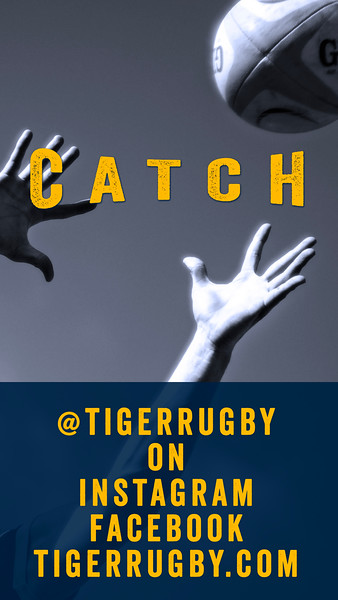 Catch Tiger06.jpg
