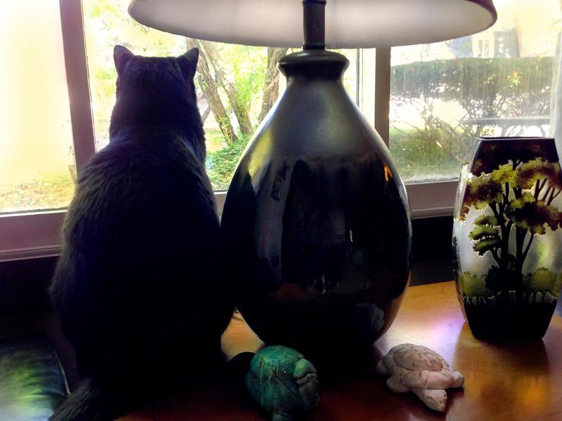 liz and the lamp.jpg