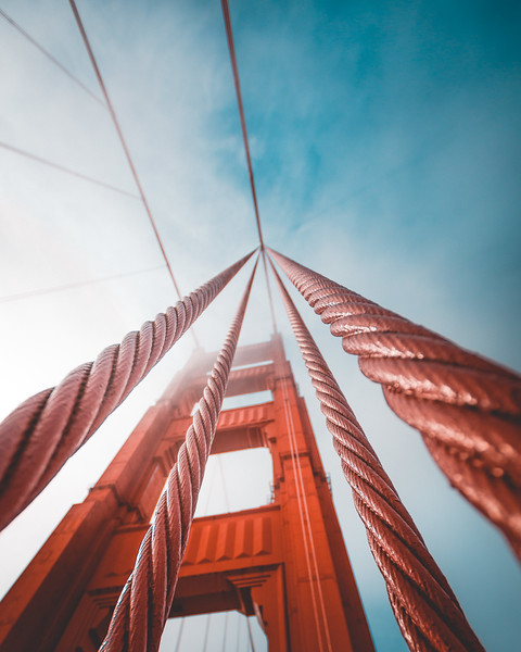 Golden Gate Bridge Look Up