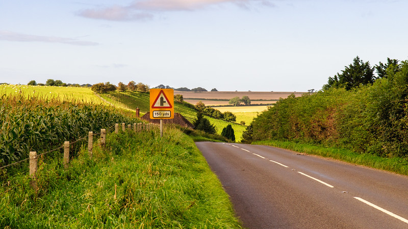 Country road in Somerset