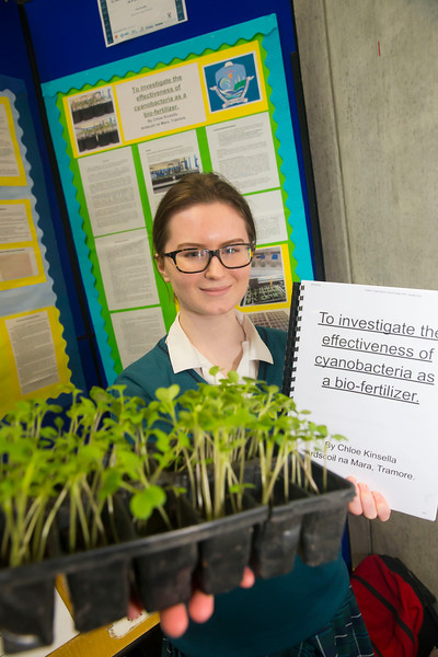 01/05/2018. SciFest at WIT (Waterford Institute of Technology) at the Arena, Pictured is Chloe Kinsella from Ard Scoil Na Mara, Tramore. Picture: Patrick Browne