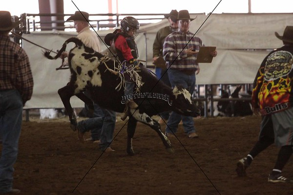 Hill Country Jr Finals Bulls