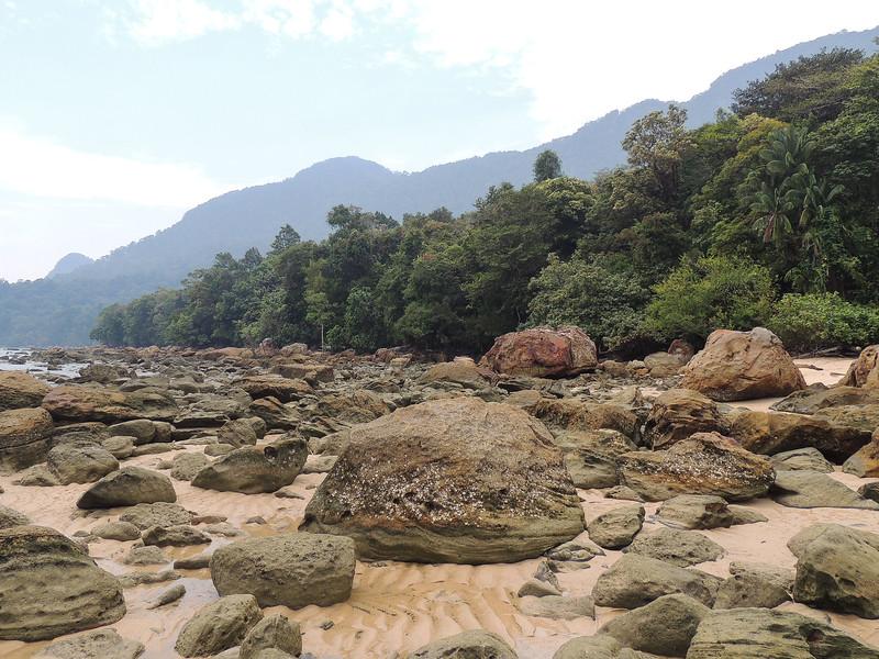 Borneo-2014-10.jpg