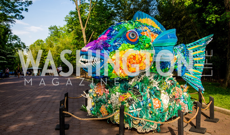 Photo by Erin Schaff. 2016. Washed Ashore: Art to Save the Sea VIP Reception. Smithsonian National Zoo Elephant Community Center. May 26, 2016.