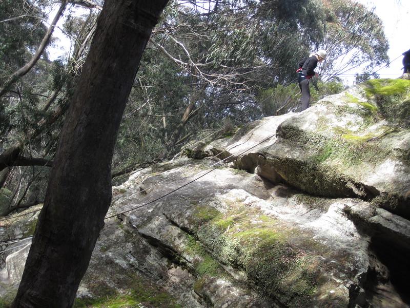 Sydney - Blue Mountains-277.JPG