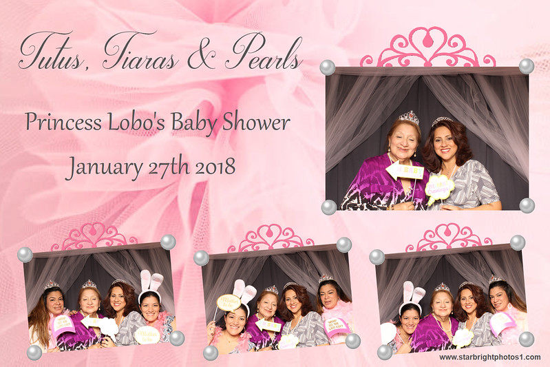 Lobo Baby Shower_08.jpg