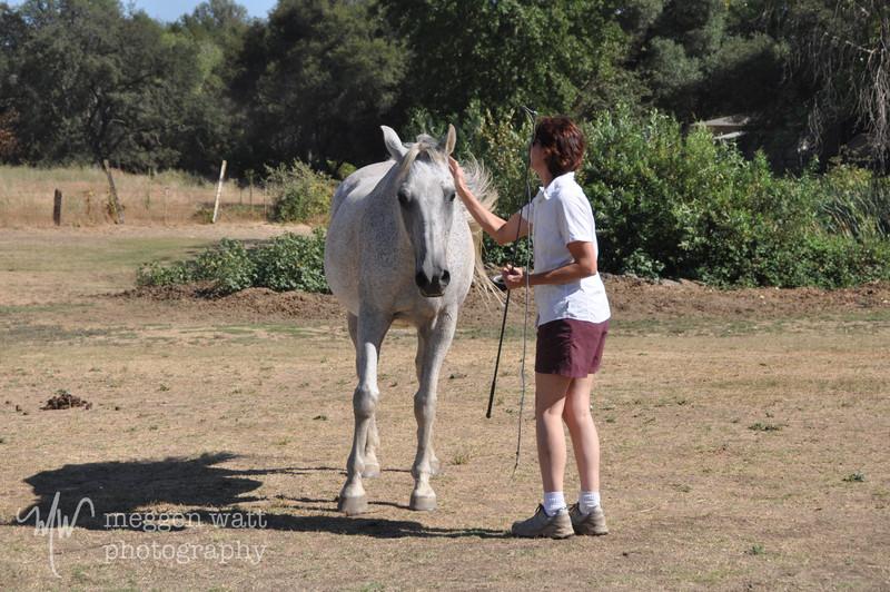 EB&Horses-078.jpg