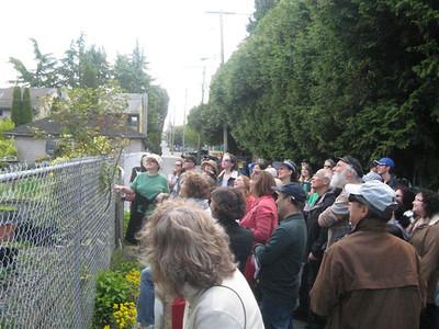 2012-05-06 Janes Walk Marpole