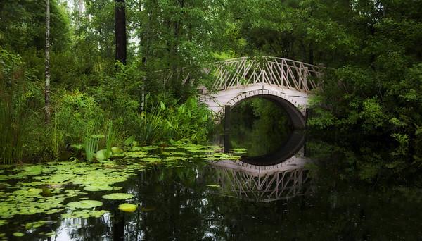 Charleston SC: Cypress Gardens, Botany Bay