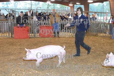 2008 KISD Swine Show