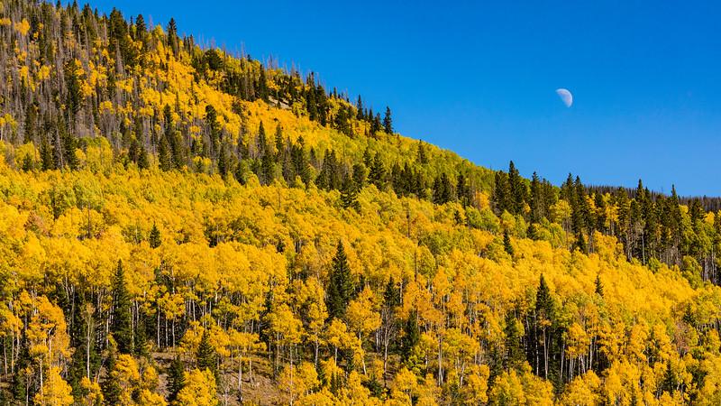 Colorado19_5D4-1558.jpg