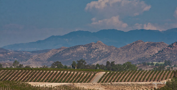 Temecula Valley, CA 2010