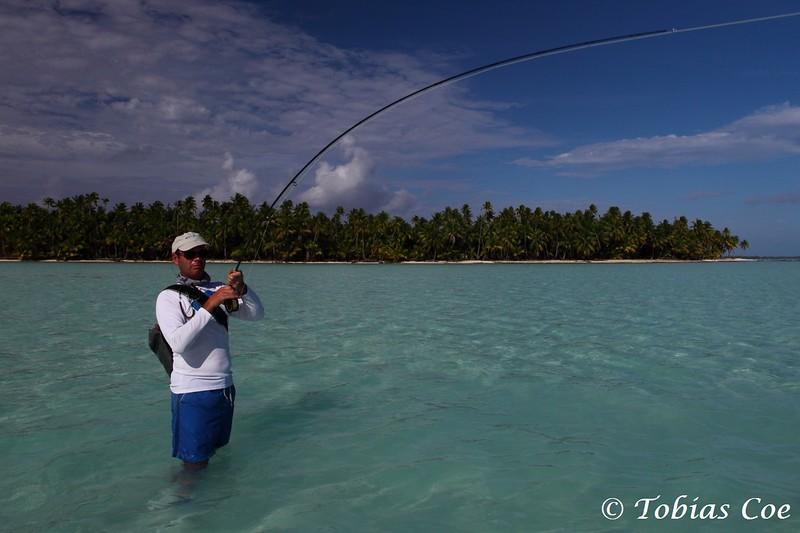 Tahiti (Anaa) (54).JPG