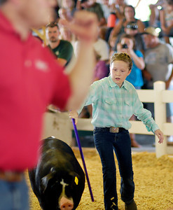 Madison County 4-H Fair: Day 2