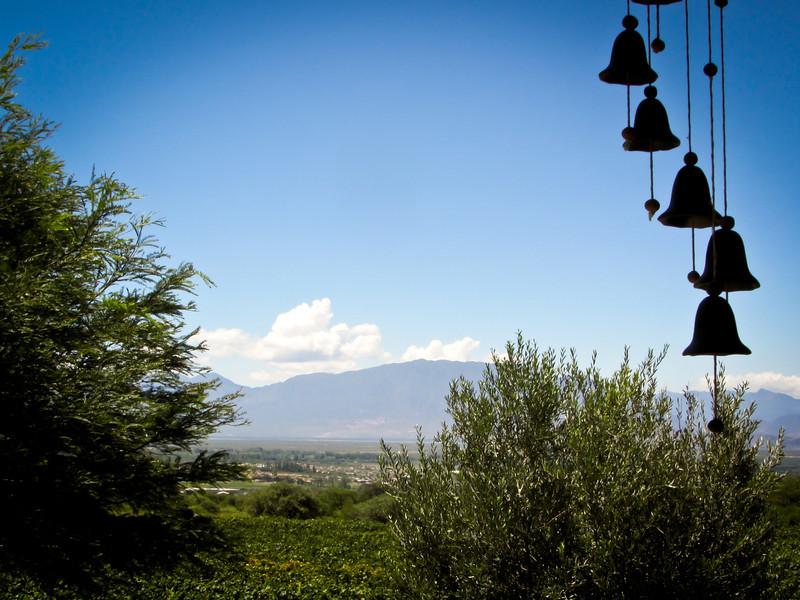 Cafayate 201202 Finca Las Nubes (46b).jpg