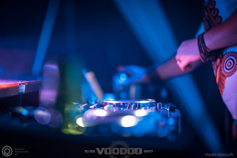 Voodoo_2017_207.jpg