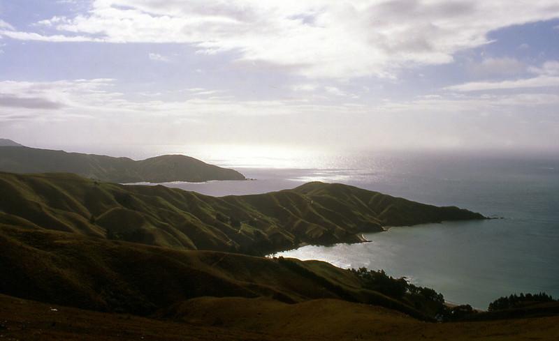 NZ_039.jpg