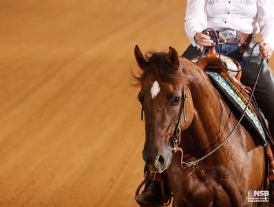 Thursday NonPro Novice Horse Set 2 7-14