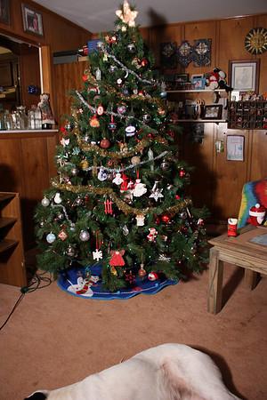 Christmas Play Time