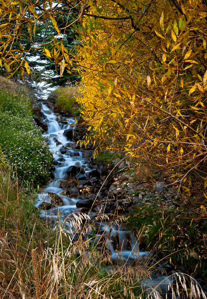Fall Idaho-7.jpg