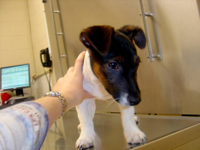 First Doctor Visit-January 2007