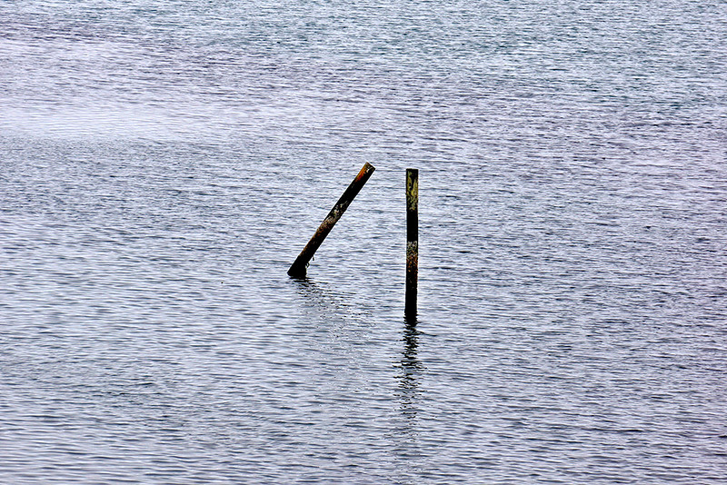 Bodega Bay Piles