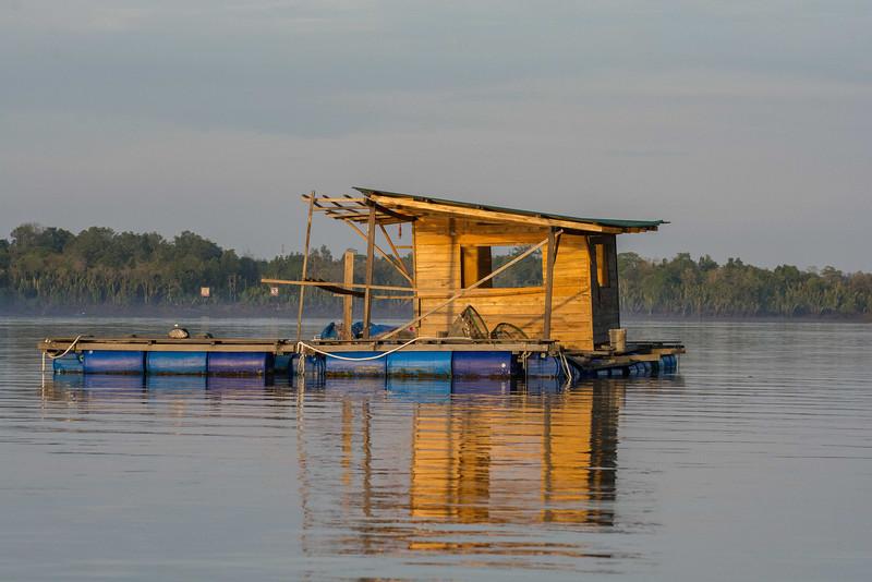 Borneo-2014-217.jpg