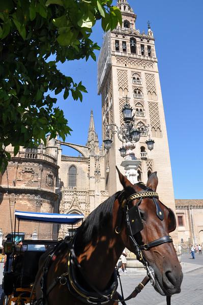 2013/07 Spain: Sevilla