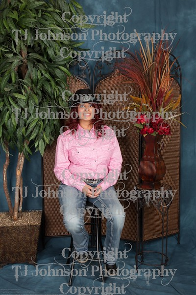 2015 Harris County Fair Queen