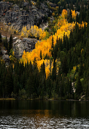 Fall Colorado Anniversary