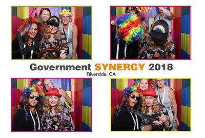 Government Synergy 2018