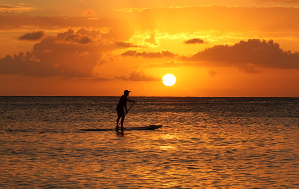 2019 1-3 Cayman Island Landscapes