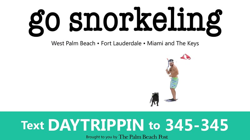 _DAY TRIPPIN - NEW COMMERCIAL 1 go snorkel GIF_PBP.mp4
