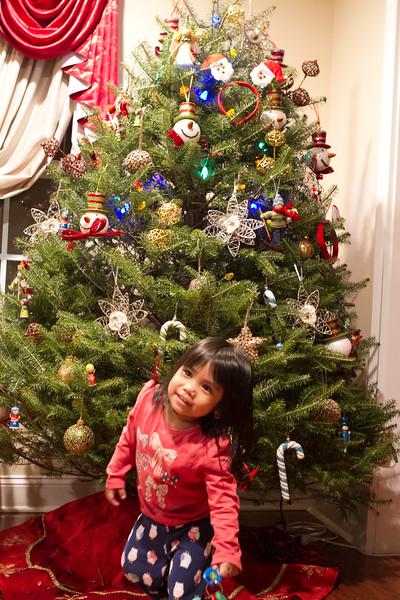 Christmas_2015-26.jpg