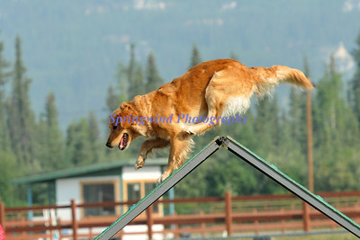 Tanana Valley Kennel Club