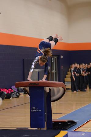 Girls Gymnastics Vs Glenbard So. 2013