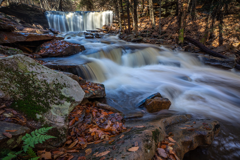 Ricketts Glen-5166.jpg