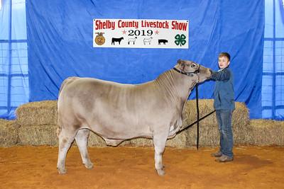 2019 Shelby County Livestock Show Auction draws big crowd