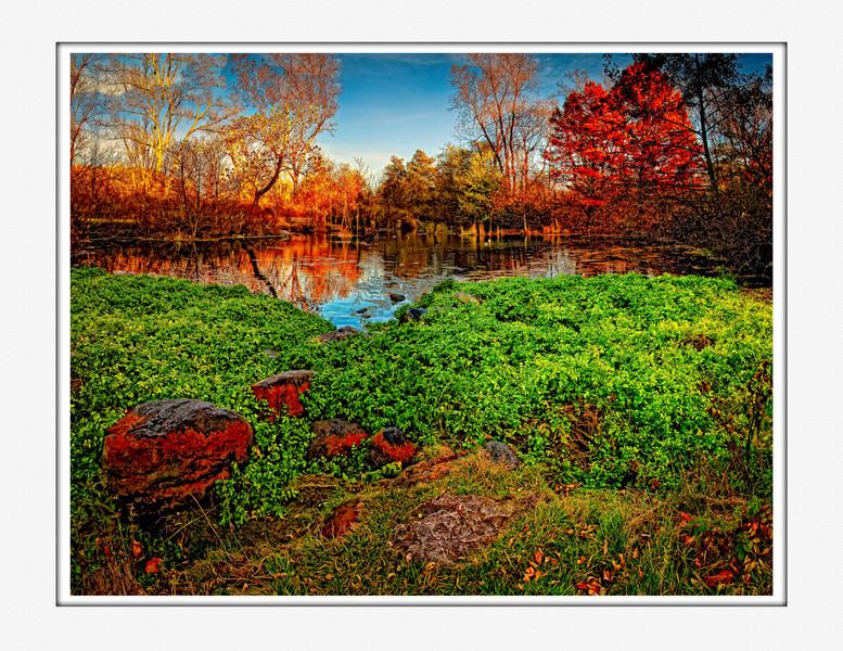 Framed DuckPond_colorful-9.jpg