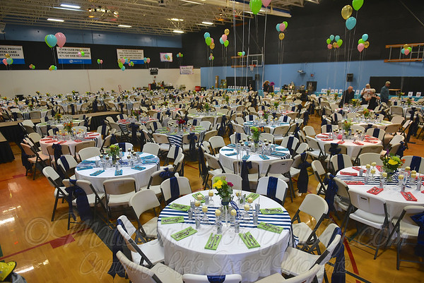 BGCA Auction 2017