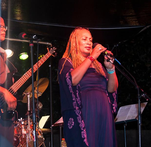Jazz Matters at Wrens Nest 122.jpg