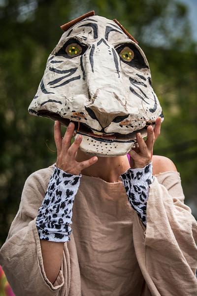 Tiger Eyes (Mollyocket Days Parade)