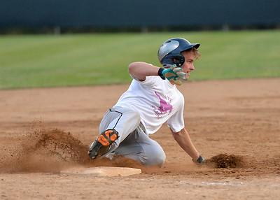 Joe Baseball 2014