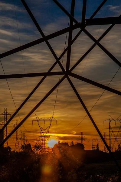 sunrise at hydro corridor-3484.jpg