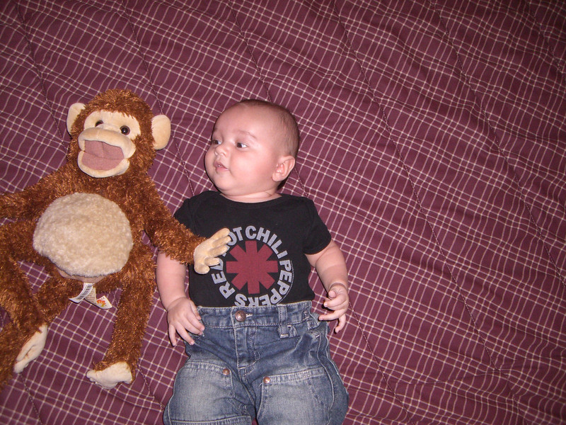 I'm bigger than the monkey