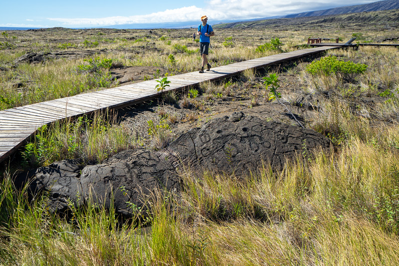 Walking on the Pu'u Loa Petroglyph Trail