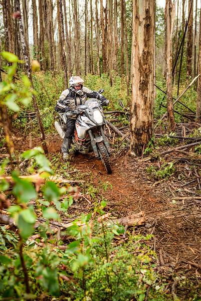 2019 KTM Australia Adventure Rallye (262).jpg